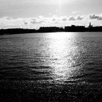 Солнечный день на Неве. :: веселов михаил