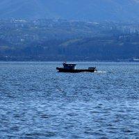 На море. :: веселов михаил