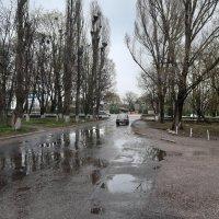 Мокрый асфальт :: Николай Филоненко