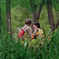 Любовь в тюльпанах! :: Татьяна Помогалова