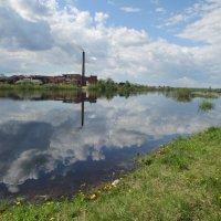 Большая вода на реке Сухона. :: Сергей Кирилловский