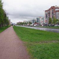 Непогода поверх самоизоляции :: AleksSPb