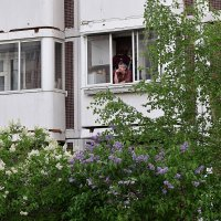 Сделал дело, гуляй на балконе смело. :: Татьяна Помогалова