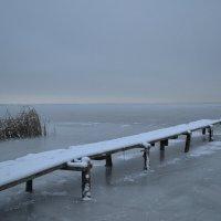 Зима осенью :: Ольга Бурьянова