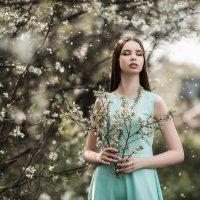 Весеннее настроение цветущих садов... :: Владимир Васильев