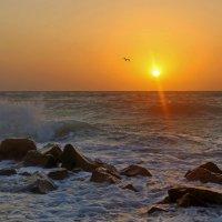 Восход на море :: Нилла Шарафан