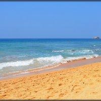 Sri Lanka. Пляжи Хиккадувы :: Михаил