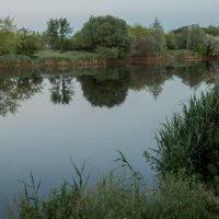 На берегу озера :: Владимир Новиков