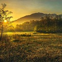 Рассвет в окрестностях села Черниговское :: Геннадий Клевцов