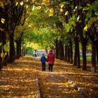 Осень в Москве (#13) :: Absolute Zero