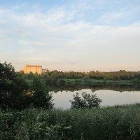 Летним днем у реки 5 :: Ирина Майорова