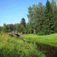 Пейзаж с Новосильвийским мостиком :: dli1953