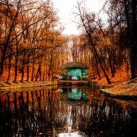 Осень в Москве (#31) :: Absolute Zero