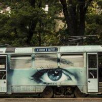 всевидящее око :: олег добрый