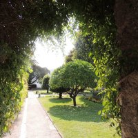 Прошел  сквозь монастырский сад,в пролом просунулся...И.Б. :: Гала