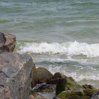 Волна :: mAri