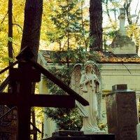 Осенний вечер Введенского Некрополя (Astrum 135 Film) :: Andrew Barkhatov