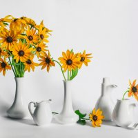 про жёлтые цветы :: kram