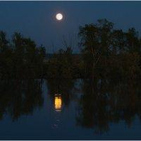 Река Ишим. Тихая лунная ночь :: Александр Максимов