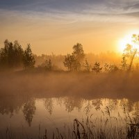 Магия утра. :: Pavel Vasilev