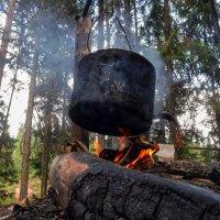 Кухня в лесу :: Дима Валерич