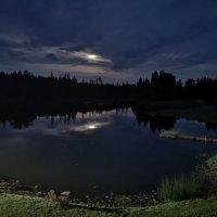 Июльская ночь :: Инга Энгель