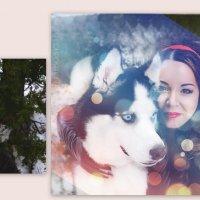 """зима :: PHOTO COMPOSITION """" FOC """""""