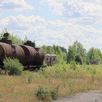 Район заброшенного вокзала. пос. Лесной... :: Александр Широнин