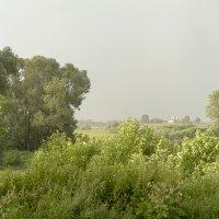 Дождь и ветер :: Арина