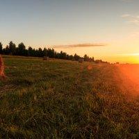 Закат на Чукше в поле :: Алексей Петропавловский