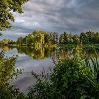 Пейзаж с дербенником :: Николай Гирш