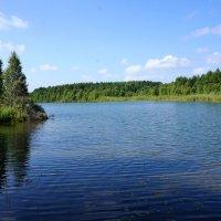 На озере :: Лариса Рогова