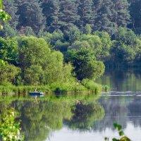тишина на лесном озере :: Александр Евдокимчик