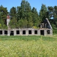 Развалины школы на острове Тулонсаари. :: Андрей