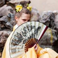 Фотопленер Поднебесная 2.0 - Япония Китай :: Илья Кузнецов