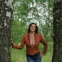 красотка среди берез :: Людмила Кострицкая