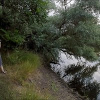 Утро у реки :: Владимир Стаценко
