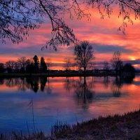 закат на реке Ааре :: Elena Wymann