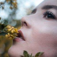 Весна #2 :: Дмитрий Коваленко
