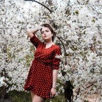 Весна #4 :: Дмитрий Коваленко