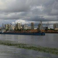 Химкинское водохранилище :: Юрий Моченов