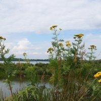 На реке с видом на август :: Галина Кан