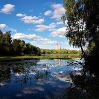 Облака упали в пруд белокрылой дружной стаей... :: Ольга Русанова (olg-rusanowa2010)