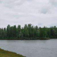 рыбалка на Катуни :: nataly-teplyakov