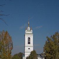 Колокольня сельской церкви в честь Казанской иконы Божией Матери в селе Константиново :: Galina Solovova