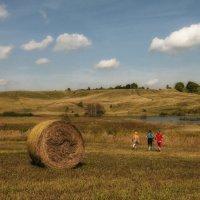 Август в деревне Лапшлей... (Нижегородская область) :: Фёдор Куракин