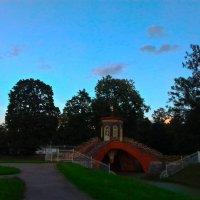 Крестовый мост :: Сапсан