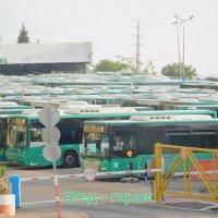Шабат у автобусов. :: Валерьян Запорожченко