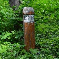 Деревянный квартальный столб :: Алексей