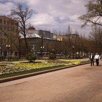 Цветной бульвар :: Игорь Белоногов